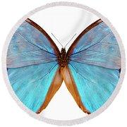 Butterfly Species Morpho Godarti Assarpai Round Beach Towel