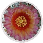 Cactus Flower 5 Round Beach Towel