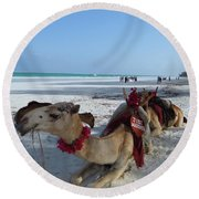 Camel On Beach Kenya Wedding Round Beach Towel