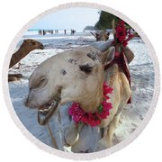 Camel On Beach Kenya Wedding3 Round Beach Towel