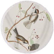 Canadian Titmouse Round Beach Towel