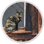 Cat In A Window Round Beach Towel
