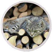 Round Beach Towel featuring the photograph Cat Resting On A Heap Of Logs by Michal Boubin