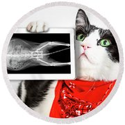Cat With X Ray Plate Round Beach Towel