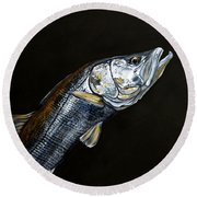 Caught In The Surf Snook Round Beach Towel