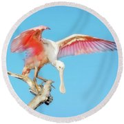 Spoonbill Cleared For Takeoff Round Beach Towel