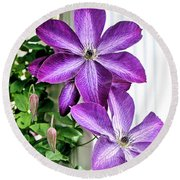 Round Beach Towel featuring the photograph Clematis by Kristin Elmquist