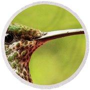 Close-up Of A Rufous-tailed Hummingbird Round Beach Towel