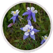 Colorado Columbine Round Beach Towel
