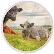 Colorful Highland Cattle Round Beach Towel by Patricia Hofmeester