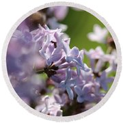 Common Purple Lilac Round Beach Towel by J McCombie