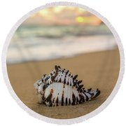 Conch Shell At Sunrise Round Beach Towel