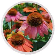 Cone Flower Round Beach Towel by Eva Kaufman