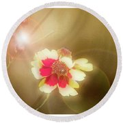 Coreopsis Flowers And Buds Round Beach Towel