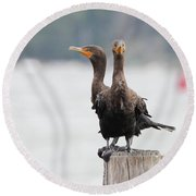 Cormorants Port Jefferson New York Round Beach Towel