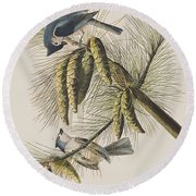 Crested Titmouse Round Beach Towel