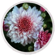 Dahlia Burst Round Beach Towel by Ronda Ryan