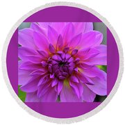 Dahlia Round Beach Towel by Ronda Ryan