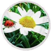 Daisy Flower And Ladybug Round Beach Towel