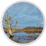Dead Tree In Marsh Round Beach Towel by Greg Nyquist