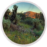 Desert Dusk Round Beach Towel by Sue Cullumber