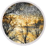 Round Beach Towel featuring the photograph Distant Memories by Jan Amiss Photography