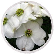 Dogwood Branch Round Beach Towel