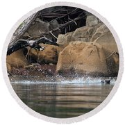 Round Beach Towel featuring the photograph Eagle Attack II by Douglas Stucky