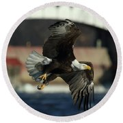 Eagle Flight Round Beach Towel by Coby Cooper
