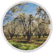 Round Beach Towel featuring the photograph Everything Is New Again by Laurie Search