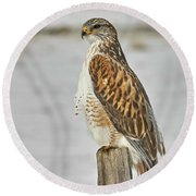 Round Beach Towel featuring the photograph Ferruginous Hawk by Doug Herr