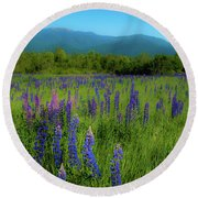 Round Beach Towel featuring the photograph Field Of Lupines by Brenda Jacobs