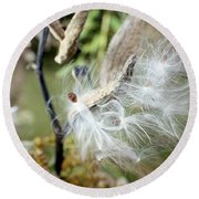 Flight Of The Milkweed Round Beach Towel