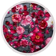 Round Beach Towel featuring the photograph Floating Camelia Blossoms by Ann Jacobson