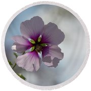 Flower In Focus Round Beach Towel