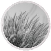 Foxtails On A Hill In Black And White Round Beach Towel