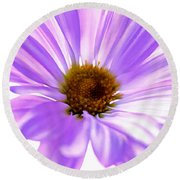 Fragile Memories Round Beach Towel