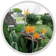 Funchal Maderia Round Beach Towel