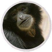 Funky Gibbon Round Beach Towel