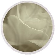 Round Beach Towel featuring the photograph Gentle Rose by The Art Of Marilyn Ridoutt-Greene
