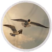 Gliders Round Beach Towel by Don Spenner