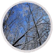 Glowing Forest, Knoch Knolls Park, Naperville Il Round Beach Towel