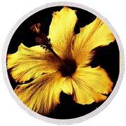 Golden Hibiscus Round Beach Towel