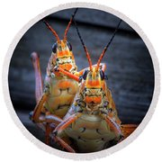 Grasshoppers In Love Round Beach Towel by Mark Andrew Thomas