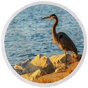 Great Blue Heron At Sunset Round Beach Towel