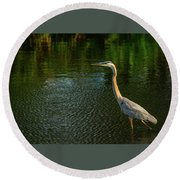 Great Blue Heron Delray Beach Florida Round Beach Towel
