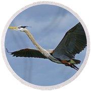 Great Blue Heron Flight 2 Round Beach Towel