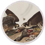 Great-footed Hawk Round Beach Towel by John James Audubon