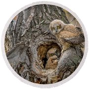 Great Horned Owlets In A Nest Round Beach Towel