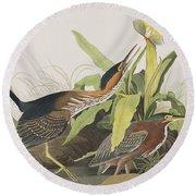 Green Heron Round Beach Towel by John James Audubon